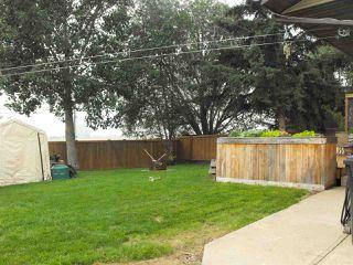 Photo 25: 5405 51 Avenue: Elk Point House for sale : MLS®# E4198360