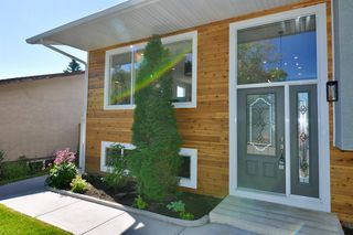 Photo 3: 235 99 Avenue SE in Calgary: Willow Park Detached for sale : MLS®# A1016375