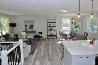 Photo 12: 235 99 Avenue SE in Calgary: Willow Park Detached for sale : MLS®# A1016375