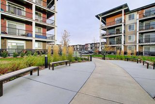 Photo 36: 405 20 Walgrove Walk SE in Calgary: Walden Apartment for sale : MLS®# A1041870