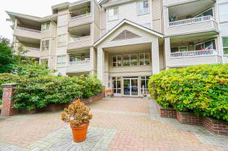 "Photo 30: 214 8139 121A Street in Surrey: Queen Mary Park Surrey Condo for sale in ""The Birches"" : MLS®# R2521291"