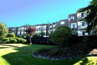 "Photo 1: 35 11900 228TH Street in Maple Ridge: East Central Condo for sale in ""Moonlite Grove"" : MLS®# R2523375"