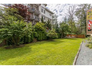 "Photo 25: 35 11900 228TH Street in Maple Ridge: East Central Condo for sale in ""Moonlite Grove"" : MLS®# R2523375"