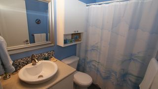 Photo 21: 131 Dawnville Drive in Winnipeg: Transcona Residential for sale (North East Winnipeg)  : MLS®# 1202210