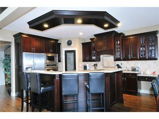 Photo 2: 12491 201ST ST in Maple Ridge: Northwest Maple Ridge House for sale : MLS®# V1017589
