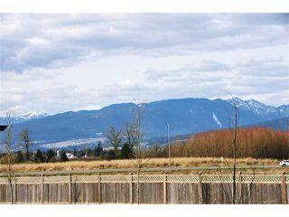 Photo 18: 12491 201ST ST in Maple Ridge: Northwest Maple Ridge House for sale : MLS®# V1017589