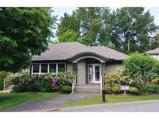 Photo 18: # 63 11737 236TH ST in Maple Ridge: Cottonwood MR Condo for sale : MLS®# V1067679