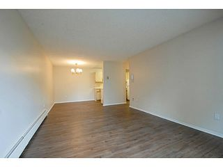 Photo 3: # 211 515 ELEVENTH ST in New Westminster: Uptown NW Condo for sale : MLS®# V1100230