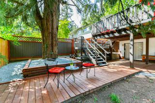 Photo 20: 3848 CLEMATIS CRESCENT in Port Coquitlam: Oxford Heights House for sale : MLS®# R2274835
