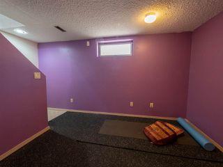 Photo 19: 14240 25 Street in Edmonton: Zone 35 House for sale : MLS®# E4207997