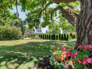 Photo 22: 3868 Carey Rd in : SW Tillicum House for sale (Saanich West)  : MLS®# 850133