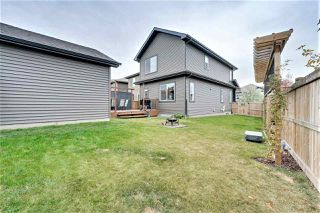 Photo 31: 3385 WEIDLE Way in Edmonton: Zone 53 House for sale : MLS®# E4217109