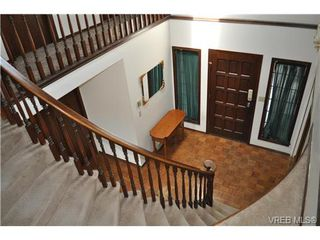 Photo 13: 817 Beckwith Ave in VICTORIA: SE Lake Hill House for sale (Saanich East)  : MLS®# 647407