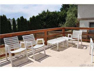 Photo 11: 817 Beckwith Ave in VICTORIA: SE Lake Hill House for sale (Saanich East)  : MLS®# 647407