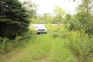 Photo 8: Lt 2 Hwy 121 in Kawartha Lakes: Rural Somerville Property for sale : MLS®# X2986227