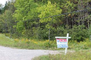 Photo 10: Lt 2 Hwy 121 in Kawartha Lakes: Rural Somerville Property for sale : MLS®# X2986227