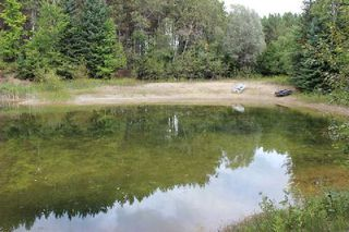 Photo 15: Lt 2 Hwy 121 in Kawartha Lakes: Rural Somerville Property for sale : MLS®# X2986227