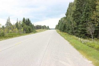 Photo 11: Lt 2 Hwy 121 in Kawartha Lakes: Rural Somerville Property for sale : MLS®# X2986227
