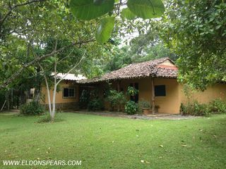 Photo 4: House for Rent near Penonome