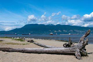 Photo 15: 11 1949 W 8TH AVENUE in Vancouver: Kitsilano Condo for sale (Vancouver West)  : MLS®# R2134042