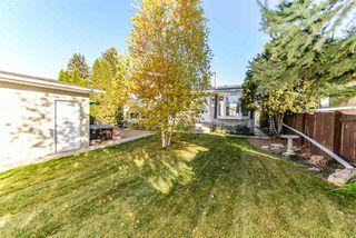 Photo 17: 11719 39 Avenue in Edmonton: Zone 16 House for sale : MLS®# E4177190