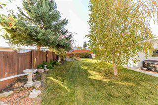 Photo 16: 11719 39 Avenue in Edmonton: Zone 16 House for sale : MLS®# E4177190