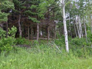 Photo 6: Lot 5B Pictou Landing Road, Little Harbour in Little Harbour: 108-Rural Pictou County Vacant Land for sale (Northern Region)  : MLS®# 202010236