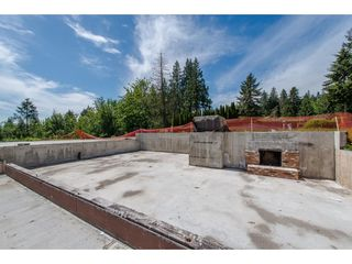Photo 5: 7788 ROSS Road in Abbotsford: Bradner Land for sale : MLS®# R2465890