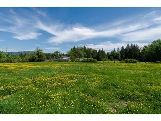 Photo 7: 7788 ROSS Road in Abbotsford: Bradner Land for sale : MLS®# R2465890