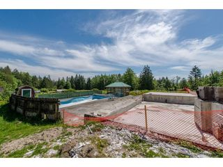 Photo 11: 7788 ROSS Road in Abbotsford: Bradner Land for sale : MLS®# R2465890