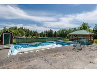 Photo 4: 7788 ROSS Road in Abbotsford: Bradner Land for sale : MLS®# R2465890