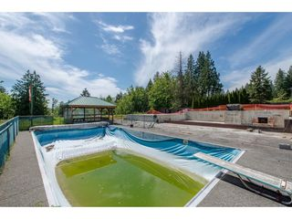 Photo 6: 7788 ROSS Road in Abbotsford: Bradner Land for sale : MLS®# R2465890