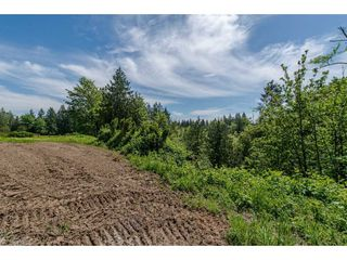 Photo 13: 7788 ROSS Road in Abbotsford: Bradner Land for sale : MLS®# R2465890