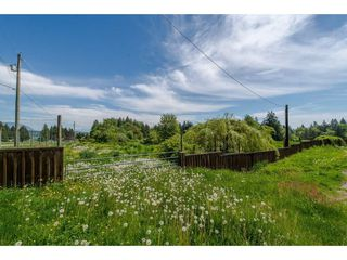 Photo 14: 7788 ROSS Road in Abbotsford: Bradner Land for sale : MLS®# R2465890