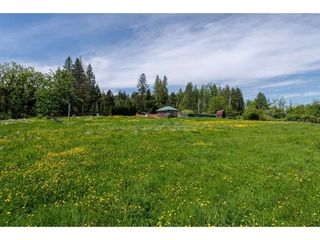 Photo 8: 7788 ROSS Road in Abbotsford: Bradner Land for sale : MLS®# R2465890