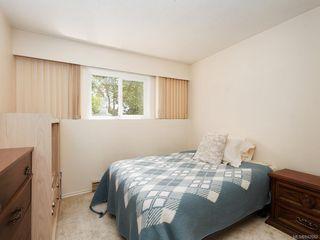Photo 16: 4362 Shelbourne St in Saanich: SE Gordon Head House for sale (Saanich East)  : MLS®# 842682