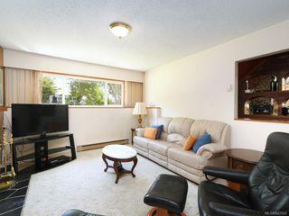 Photo 13: 4362 Shelbourne St in Saanich: SE Gordon Head House for sale (Saanich East)  : MLS®# 842682