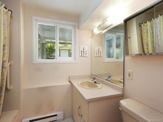 Photo 17: 4362 Shelbourne St in Saanich: SE Gordon Head House for sale (Saanich East)  : MLS®# 842682