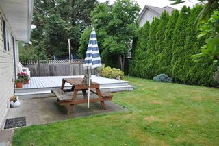 Photo 37: 3337 273A Street in Langley: Aldergrove Langley House for sale : MLS®# R2478783