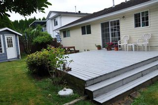 Photo 33: 3337 273A Street in Langley: Aldergrove Langley House for sale : MLS®# R2478783