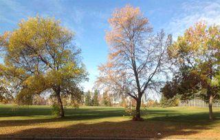 Photo 8: 10219 84 Street in Edmonton: Zone 19 House for sale : MLS®# E4221302