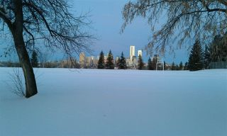 Photo 10: 10219 84 Street in Edmonton: Zone 19 House for sale : MLS®# E4221302