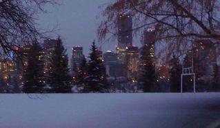 Photo 5: 10219 84 Street in Edmonton: Zone 19 House for sale : MLS®# E4221302