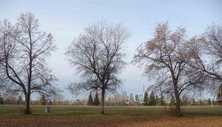Photo 6: 10219 84 Street in Edmonton: Zone 19 House for sale : MLS®# E4221302