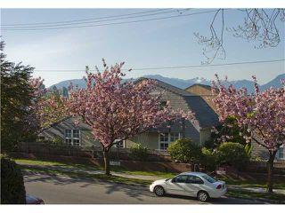 Photo 9: 110 2142 CAROLINA Street in Vancouver: Mount Pleasant VE Condo for sale (Vancouver East)  : MLS®# V908425