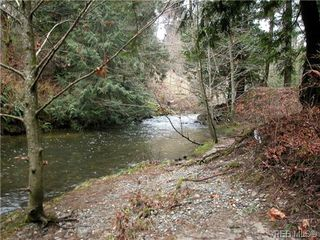 Photo 7: 393 Atkins Ave in VICTORIA: La Atkins Land for sale (Langford)  : MLS®# 628880