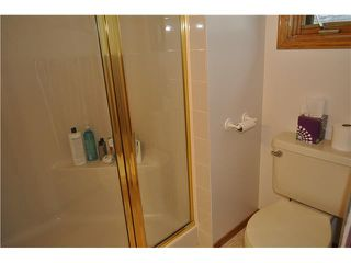 Photo 9: 1235 ERIN Drive SE: Airdrie Residential Detached Single Family for sale : MLS®# C3580780