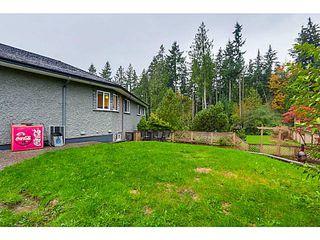 Photo 20: 26165 127TH AV in Maple Ridge: Websters Corners House for sale : MLS®# V1092167