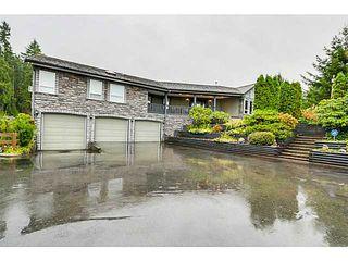 Photo 1: 26165 127TH AV in Maple Ridge: Websters Corners House for sale : MLS®# V1092167