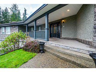 Photo 5: 26165 127TH AV in Maple Ridge: Websters Corners House for sale : MLS®# V1092167